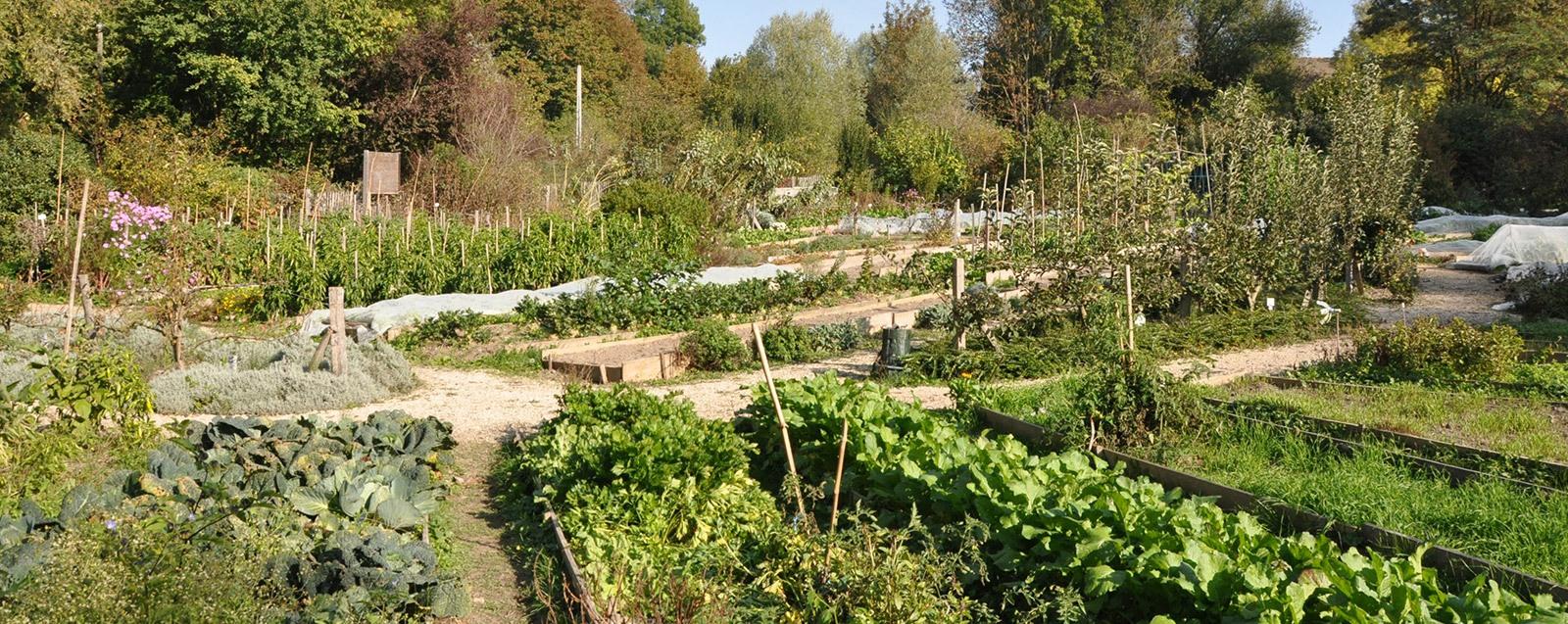 Jardin collectif de Vaugelas, Villefontaine