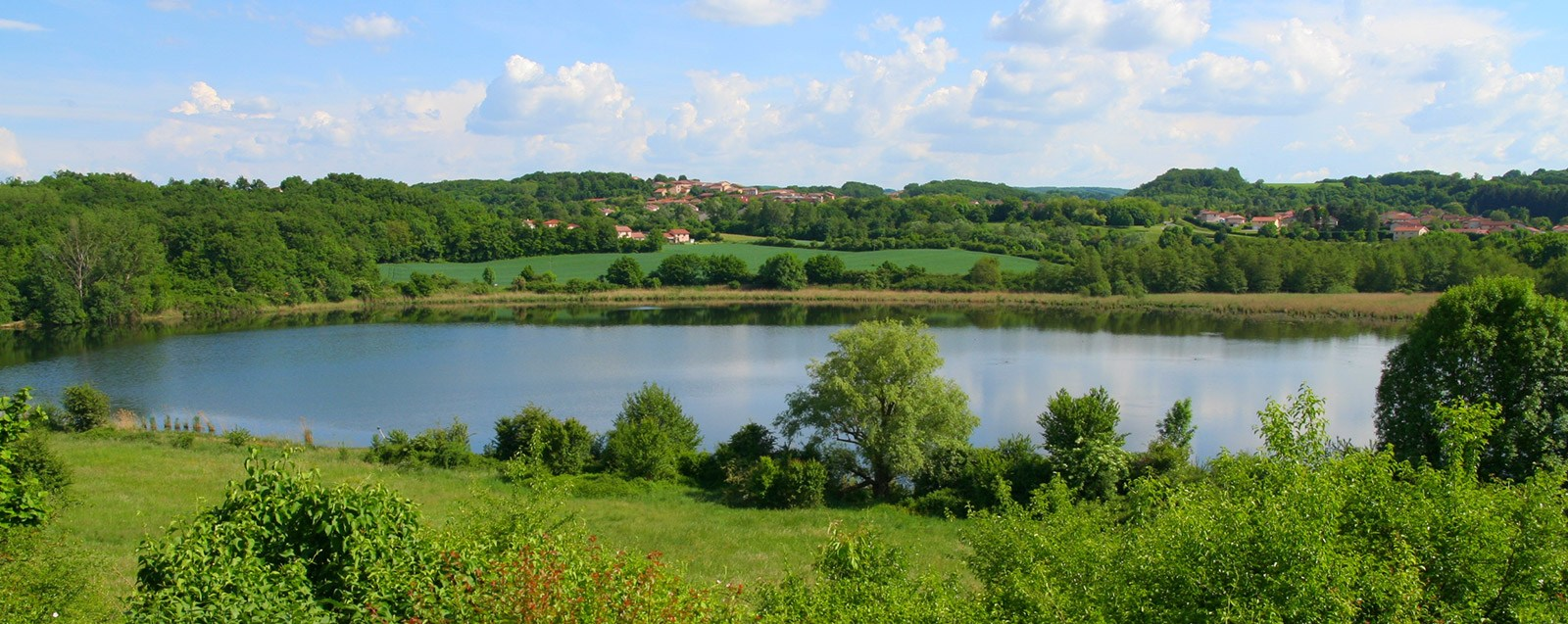 Réserve naturelle de Saint Bonnet, Villefontaine